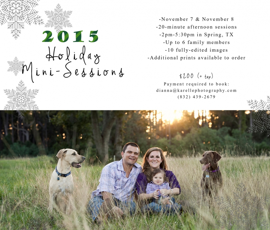 houston mini sessions 2015